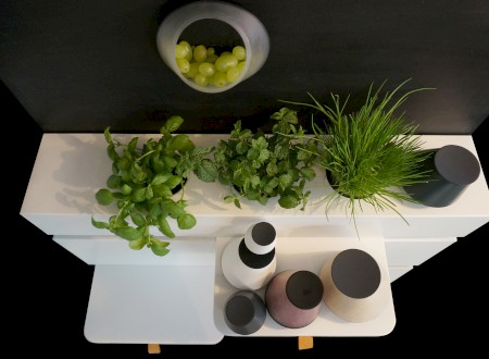 6_ Phoenix Design Academy and the Kitchen of the Future. Animo by Rosi Weisse.